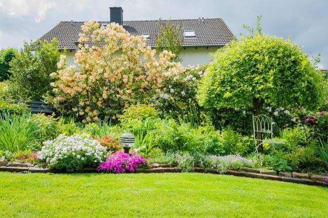 ogród w kwiatach, kompozycje z krzewów, ogrody, rośliny lata, krzewy kwitnące latem