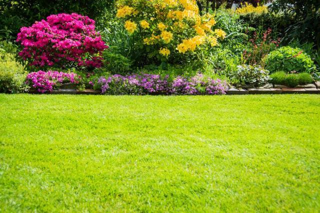 kompozycje z krzewów, ogrody, rośliny lata, krzewy kwitnące latem, ogród w kwiatach