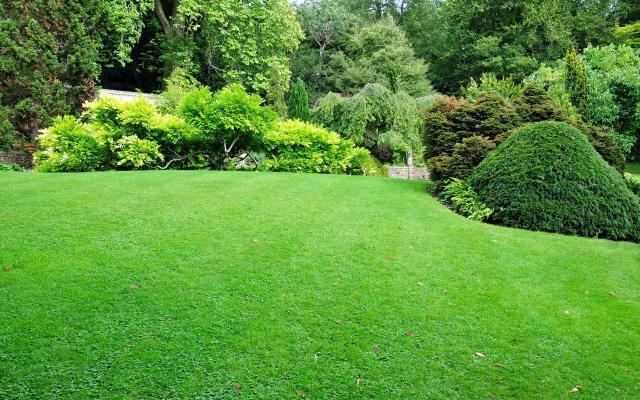 ogród, projekt ogrodu, ogród pokazowy, kompozycje roślinne, rośliny do ogrodu, rośliny