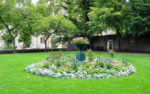 projekt ogrodu, ogród pokazowy, kompozycje roślinne, rośliny do ogrodu, rośliny, ogród
