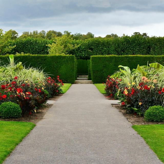 kompozycje roślinne, rośliny do ogrodu, rośliny, ogród, projekt ogrodu, ogród pokazowy