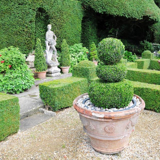 ogród pokazowy, kompozycje roślinne, rośliny do ogrodu, rośliny, ogród, projekt ogrodu, galeria zdjęć