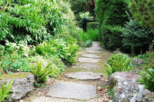 kompozycje roślinne, rośliny do ogrodu, rośliny, ogród, projekt ogrodu, galeria zdjęć, ogród pokazowy