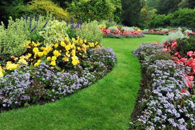 rośliny, ogród, projekt ogrodu, galeria zdjęć, ogród pokazowy, kompozycje roślinne, rośliny do ogrodu