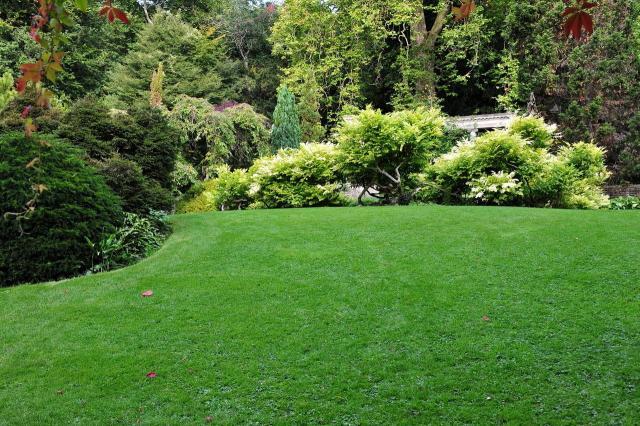 ogród, projekt ogrodu, galeria zdjęć, ogród pokazowy, kompozycje roślinne, rośliny do ogrodu, rośliny