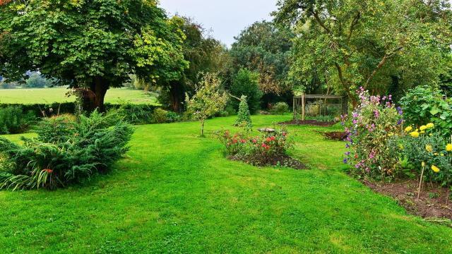 galeria zdjęć, ogród pokazowy, kompozycje roślinne, rośliny do ogrodu, rośliny, ogród, projekt ogrodu