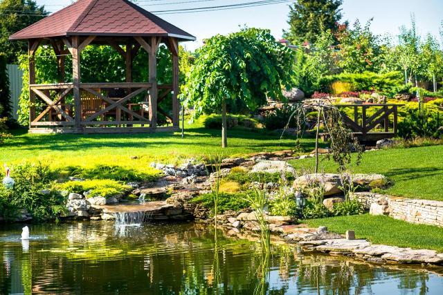 oczko w ogrodzie, ogród, galeria zdjęć, ogród naturalistyczny, oczko wodne