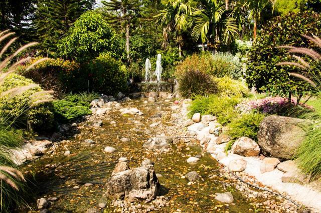 galeria zdjęć, ogród naturalistyczny, oczko wodne, oczko w ogrodzie, ogród