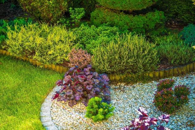 jak urządzić ogród, kompozycje iglaków, krzewy i drzewa iglaste, ogród z iglakami, ogrody przydomowe