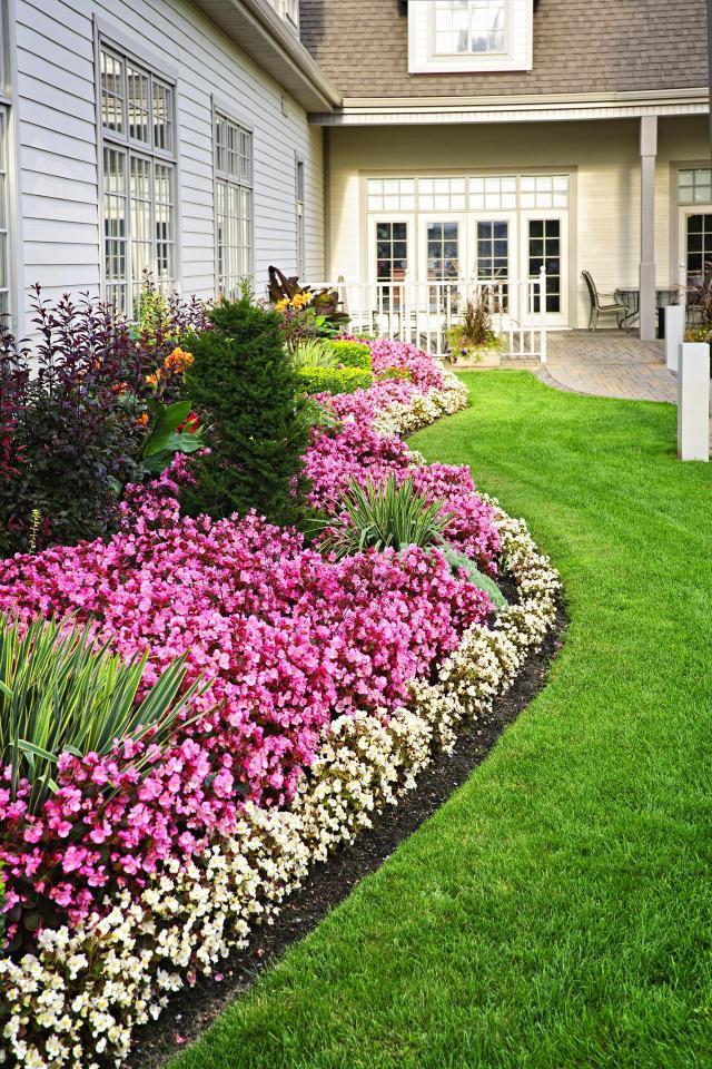 rabaty faliste, rabaty kwiatowe, kompozycje roślinne, rośliny, ogród, projekt ogrodu