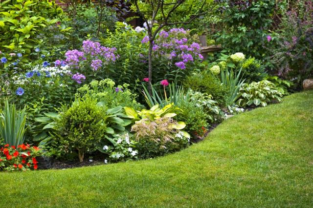 rabaty kwiatowe, kompozycje roślinne, rośliny, ogród, projekt ogrodu, rabaty faliste