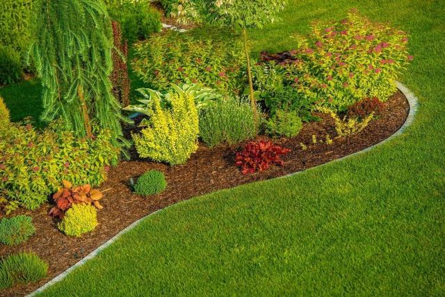 rośliny, ogród, projekt ogrodu, rabaty faliste, rabaty kwiatowe, kompozycje roślinne