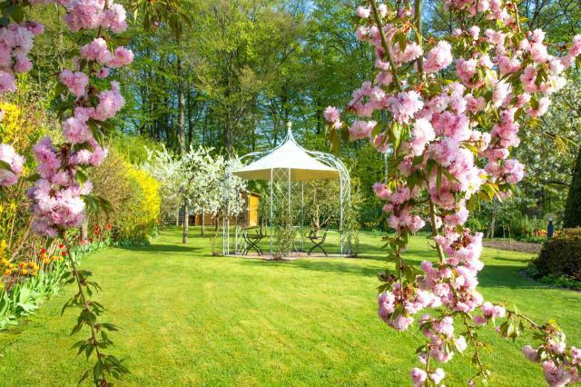 ogród jak z bajki, aranżacja ogrodu, projekt ogrodu, kompozycje roślinne, ogród