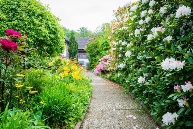 kompozycje roślinne, ogród, ogród jak z bajki, aranżacja ogrodu, projekt ogrodu