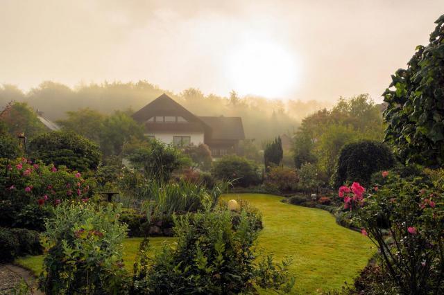 ogród, ogród jak z bajki, aranżacja ogrodu, projekt ogrodu, kompozycje roślinne