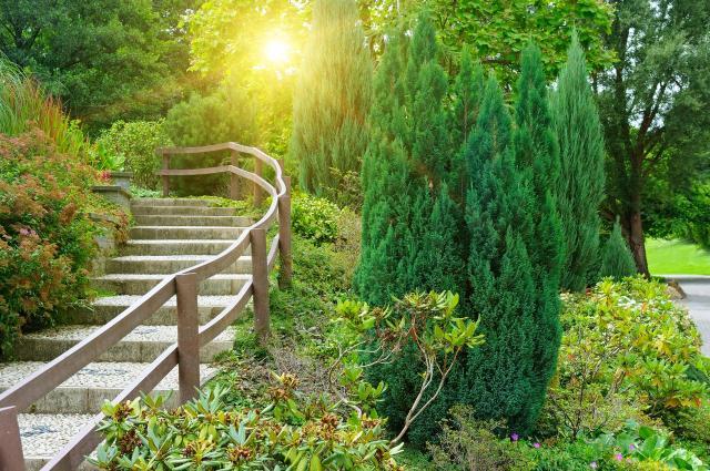 kompozycje roślinne, magiczne ogrody, aranżacje ogrodów, projekty ogrodów, ogrody naturalistyczne, ogród