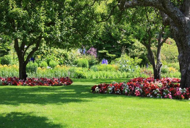 projekty ogrodów, aranżacja ogrodów, ogrodu przydomowe, ogrody duże, ogrody angielskie, ogrody wiejskie, ogród, kompozycje roślinne