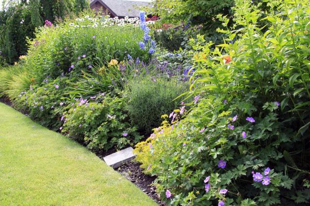 ogrody angielskie, ogrody wiejskie, ogród, kompozycje roślinne, projekty ogrodów, aranżacja ogrodów, ogrodu przydomowe, ogrody duże