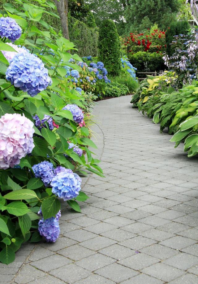 ogrody wiejskie, ogród, kompozycje roślinne, projekty ogrodów, aranżacja ogrodów, ogrodu przydomowe, ogrody duże, ogrody angielskie