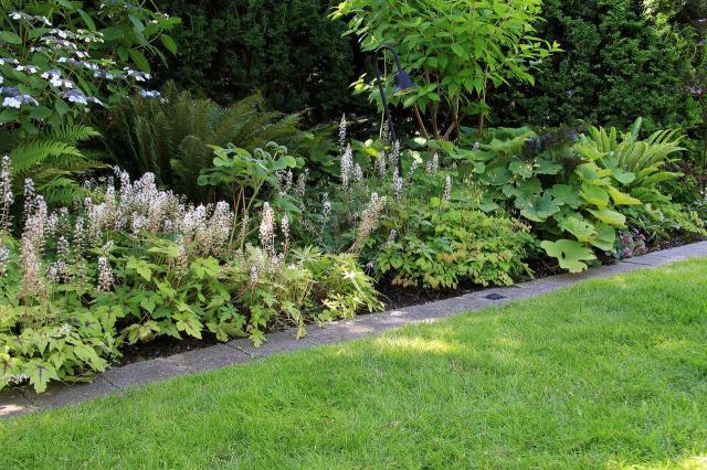 ogród, kompozycje roślinne, projekty ogrodów, aranżacja ogrodów, ogrodu przydomowe, ogrody duże, ogrody angielskie, ogrody wiejskie