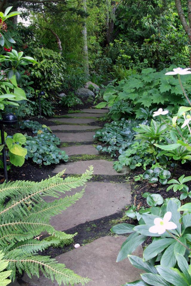 kompozycje roślinne, projekty ogrodów, aranżacja ogrodów, ogrodu przydomowe, ogrody duże, ogrody angielskie, ogrody wiejskie, ogród