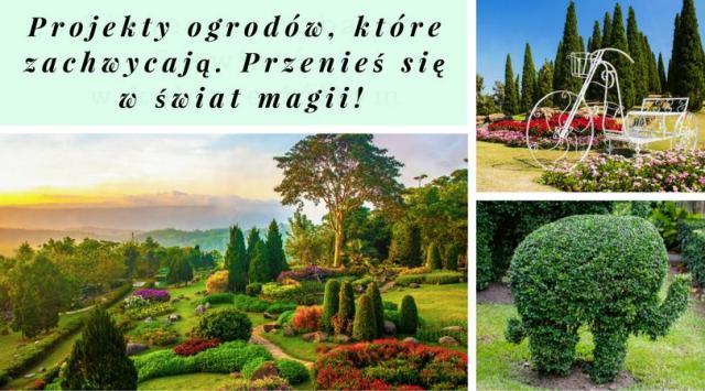 Projekty ogrodów, które zachwycają. Przenieś się w świat magii!