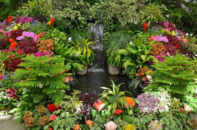 ogród wiejski, kompozycje roślinne, ogród w stylu rustykalnym, ogród rustykalny, ogród przydomowy