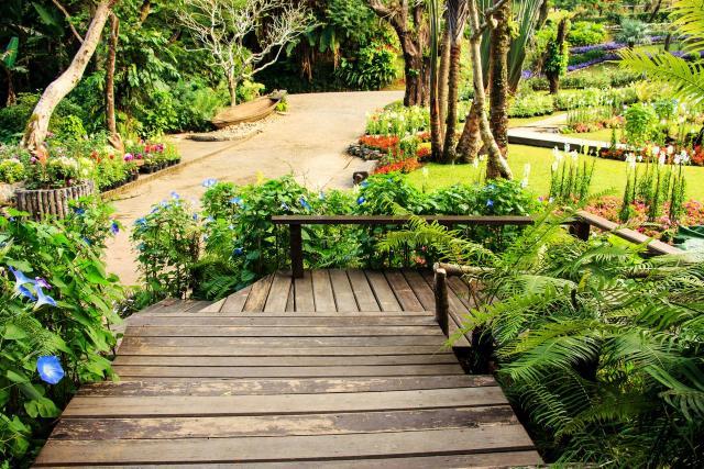ogród rustykalny, ogród przydomowy, ogród wiejski, kompozycje roślinne, ogród w stylu rustykalnym