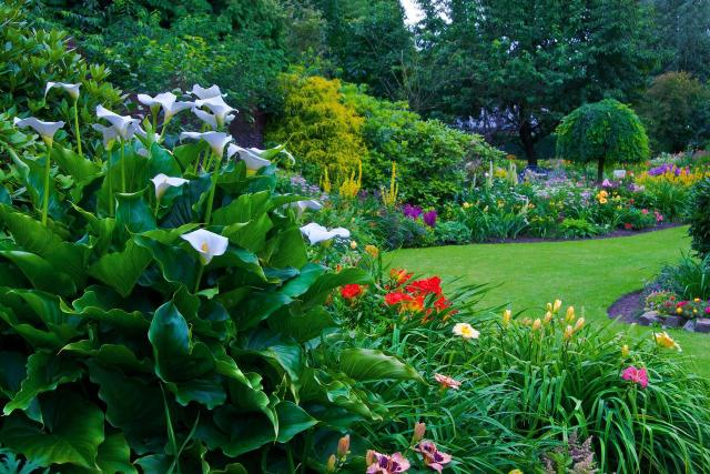 ogród, inspiracje, jak urządzić ogród, projekt ogrodu, aranżacja ogrodu, kompozycje roślinne, ścieżki w ogrodzie