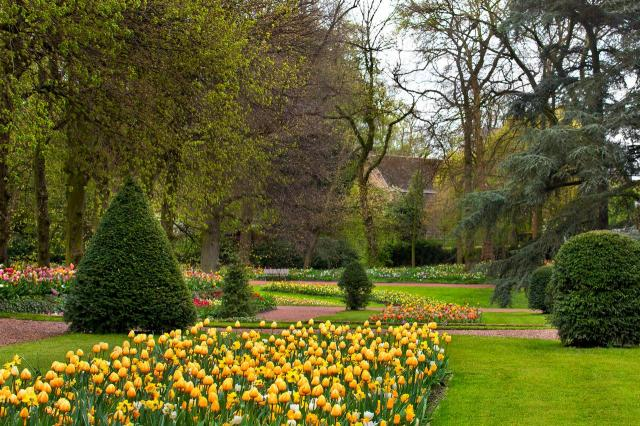 aranżacja ogrodu, kompozycje roślinne, ścieżki w ogrodzie, ogród, inspiracje, jak urządzić ogród, projekt ogrodu