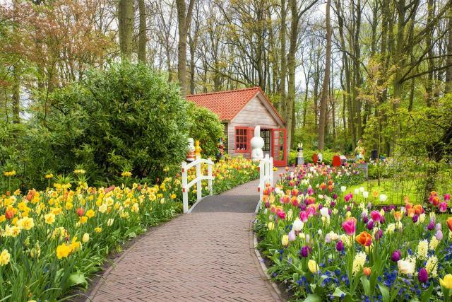 projekt ogrodu, aranżacja ogrodu, kompozycje roślinne, ścieżki w ogrodzie, ogród, inspiracje, jak urządzić ogród