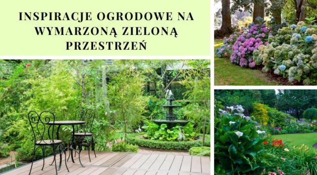Inspiracje ogrodowe na wymarzoną zieloną przestrzeń