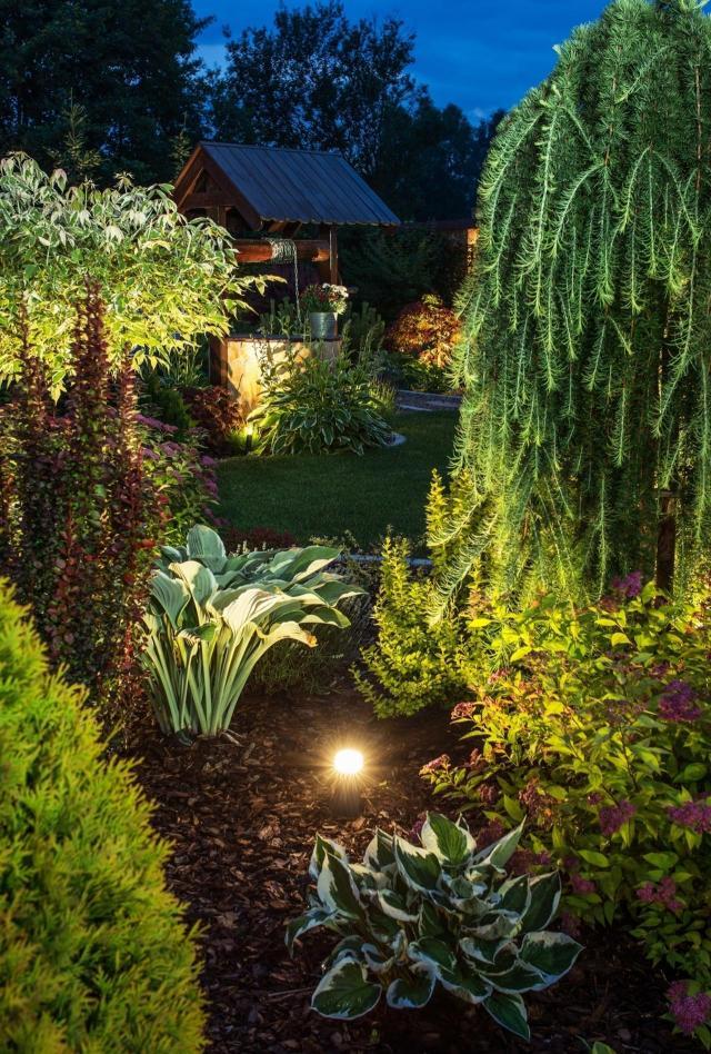 kompozycje roślinne, ogród przydomowy, rośliny do ogrodu, krzewy, iglaki, krzewy ozdobne, iglaki ozdobne