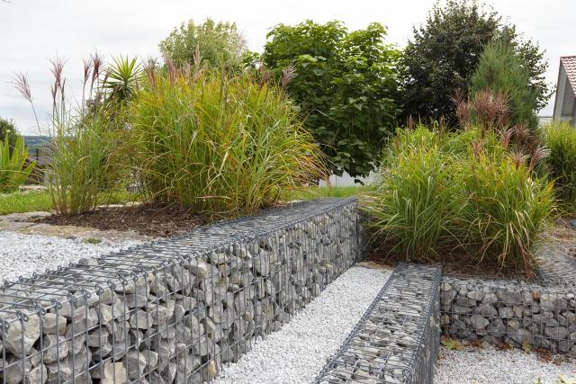 iglaki ozdobne, kompozycje roślinne, ogród przydomowy, rośliny do ogrodu, ogród nowoczesny, krzewy, iglaki, krzewy ozdobne