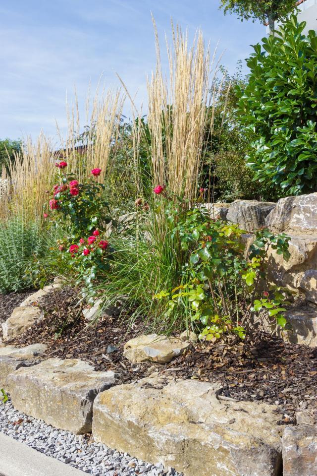 kompozycje roślinne, ogród przydomowy, rośliny do ogrodu, ogród nowoczesny, krzewy, iglaki, krzewy ozdobne, iglaki ozdobne