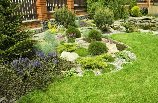 iglaki, iglaki ozdobne, kompozycje roślinne, mały ogród, rośliny do ogrodu, drzewa iglaste, krzewy iglaste