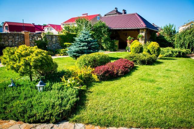drzewa iglaste, krzewy iglaste, iglaki, iglaki ozdobne, kompozycje roślinne, mały ogród, rośliny do ogrodu