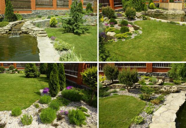 ogród przydomowy, rośliny do ogrodu, drzewa iglaste, krzewy iglaste, iglaki, iglaki ozdobne, kompozycje roślinne