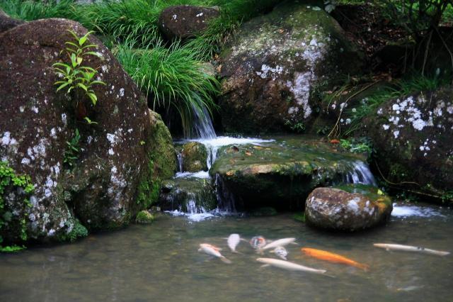 fontanny w ogrodzie, małe oczko wodne, dodatki do ogrodu, sztuczny potok, oczka wodne, woda w ogrodzie, kaskady