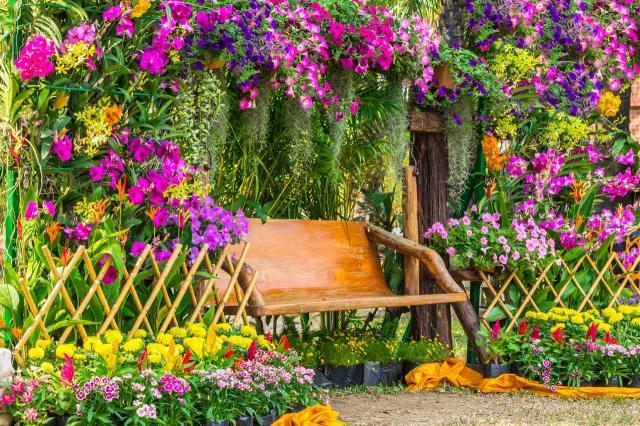 ogród marzeń, kwiaty do ogrodu, rośliny do ogrodu