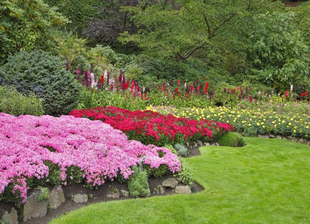 rośliny do ogrodu, kwiaty do ogrodu, kwiaty ogrodowe, ogród całoroczny