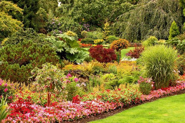 Jak tanio urządzić ogród?